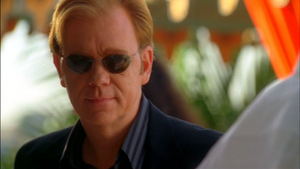 CSI: Miami ~ Head Case