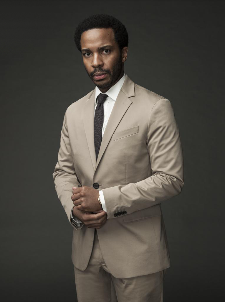 गढ़, महल Rock - Season 1 Portrait - Andre Holland as Henry Deaver