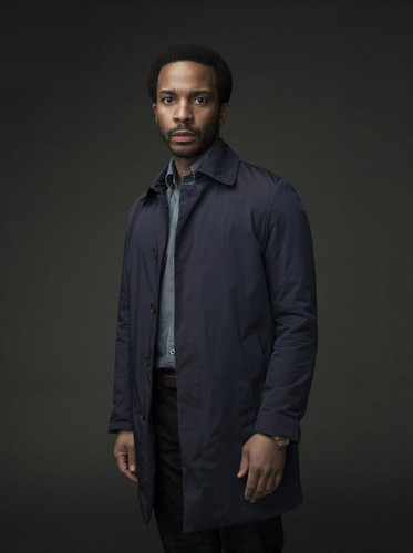 城堡 Rock (Hulu) 壁纸 titled 城堡 Rock - Season 1 Portrait - Andre Holland as Henry Deaver