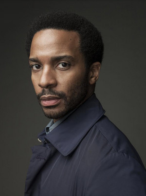 قلعہ Rock - Season 1 Portrait - Andre Holland as Henry Deaver