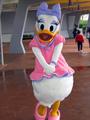 Daisy Duck - walt-disney-theme-parks photo