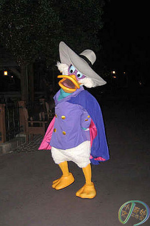 Darkwing बत्तख, बतख