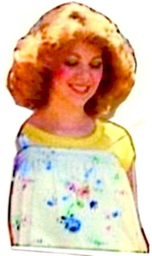 The Debra Glenn Osmond peminat Page kertas dinding called Debbie Osmond
