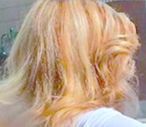 The Debra Glenn Osmond 팬 Page 바탕화면 titled Debbie's Hair