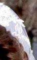 Debbie's Pretty lace