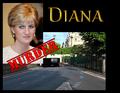 Diana  slide 03 - princess-diana photo