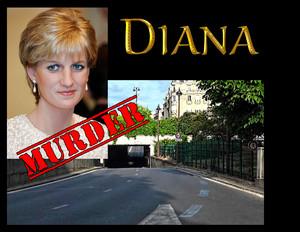 Diana slide 03