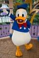 Donald Duck - walt-disney-theme-parks photo