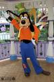 Goofy - walt-disney-theme-parks photo