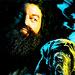 Hagrid - harry-potter icon