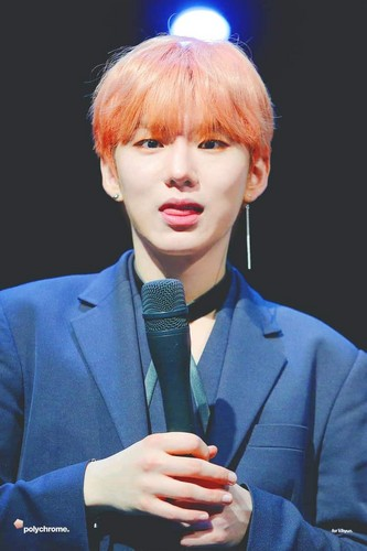 Kihyun wallpaper entitled Kihyun🌹