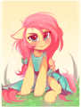 Le ponies - my-little-pony-friendship-is-magic photo