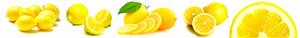 레몬 Banner