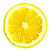 레몬 아이콘