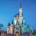 Magic Kingdom  - disney photo
