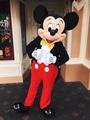 Mickey Mouse - walt-disney-theme-parks photo