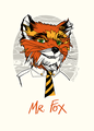 Mr Fox - fantastic-mr-fox photo