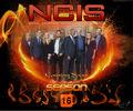 NCIS S16    - ncis photo