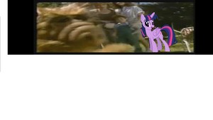 New guest comes from Equestria.JPG