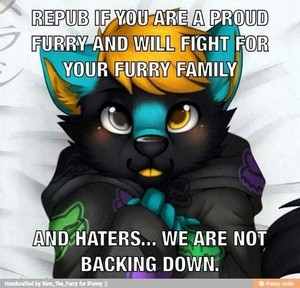 Proud Furry