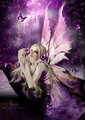 Purple Fairy - fairies photo