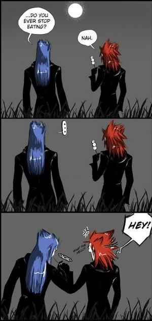 Saix and Axel   Kingdom Hearts