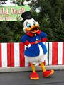 Scrooge McDuck - walt-disney-theme-parks photo