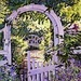 Secret Garden - yorkshire_rose icon