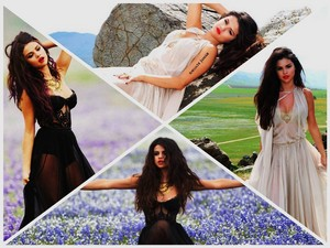 Selena Gomez - Come and Get It Hintergrund