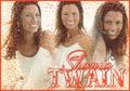 Shania Twain    3 - shania-twain fan art