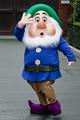 Sneezy - walt-disney-theme-parks photo