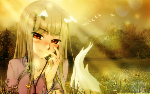 Spice And Wolf Wallpaper Entitled