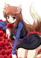 Spice and wolf  - spice-and-wolf photo