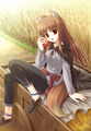 Spice and wolf  - spice-and-wolf fan art