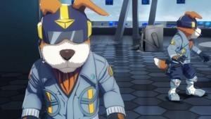 星, 星级 狐狸