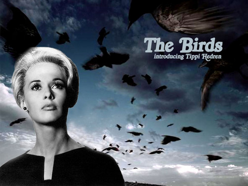 Suspense Film wallpaper entitled The Birds