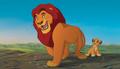 The Lion King - disney photo