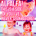 The Little Rascals - Alfalfa, Waldo and Darla - 90s-films icon