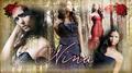 Vampire Diaries    003 - the-vampire-diaries-tv-show fan art