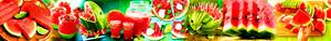 pastèque, melon d'eau Banner