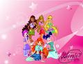 Winx Wallpaper - the-winx-club wallpaper