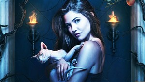 danielle campbell as davina claire in the originals tv series