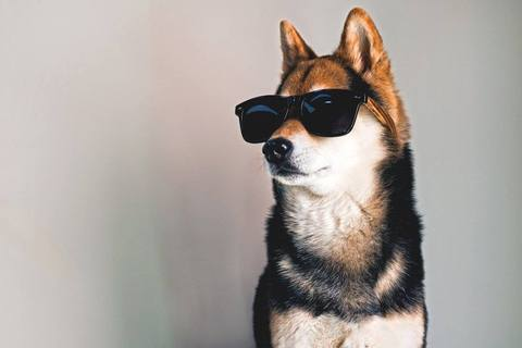 18fe9a3a7ac Aso wearing sunglasses - Aso litrato (41459294) - Fanpop