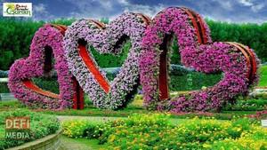 tim, trái tim garden