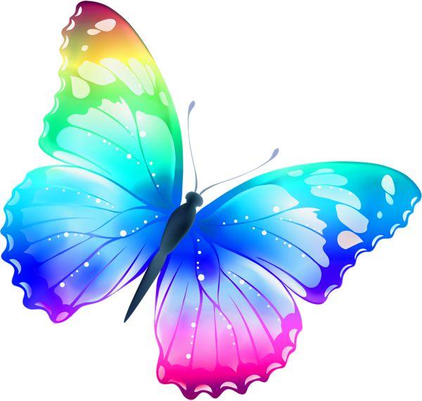 cầu vồng con bướm, bướm