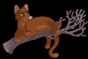 rowanclaw my fav warrior cat