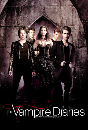 the vampire diaries season 6 poster 壁紙 1