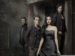 the vampire diaries season 6 壁紙 1
