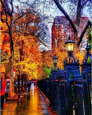 Autumn In New York
