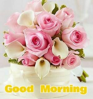A so sweet good morning ma Jess babe♥*•*¨`